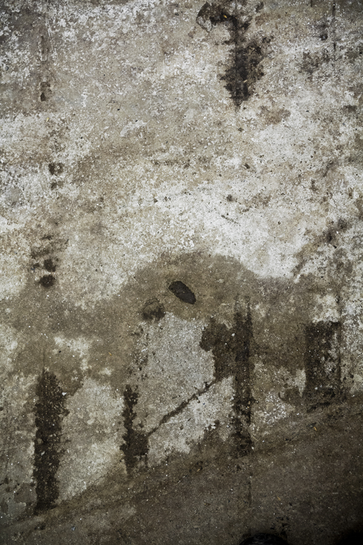 we began to reveal the textures laid in the concrete.