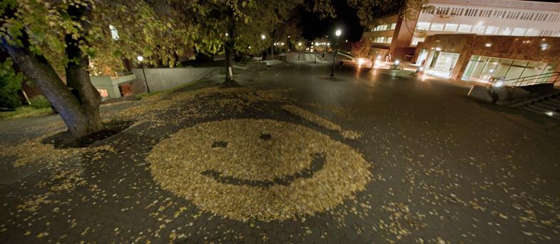 smiley face terrel_1